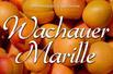 Marillenernte in der Wachau Fr-So