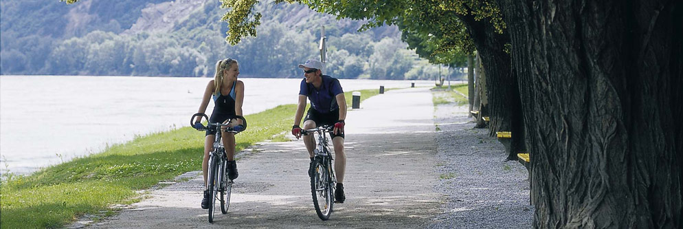 Fahrrad fahren auf dem Donauradweg in der Wachau